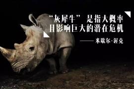 什么是灰犀牛事件?