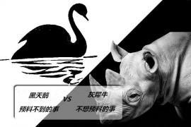 黑天鹅事件与灰犀牛事件的区别和联系?