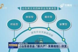 什么是农业新六产?山东省发展目标是什么?