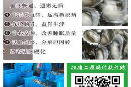 牡蛎是男人的滋补盛宴,你知道多少呢?