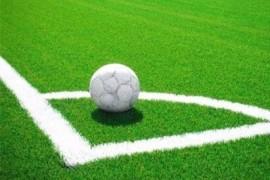 草坪产销量全球第一 社区足球场建设促内销